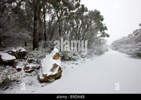 Snow, mount William, Grampians, Victoria, Australia - Stock Image