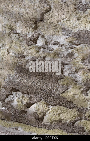 Cracked painted rendering exposing concrete structure beneath. - Stock Image