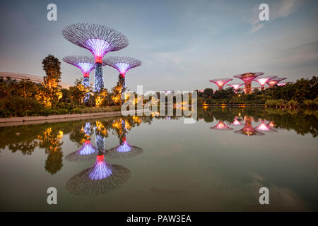 Supertrees, Singapore, illuminated at twilight and reflected in Dragonfly Lake, Gardens by the Bay. - Stock Image