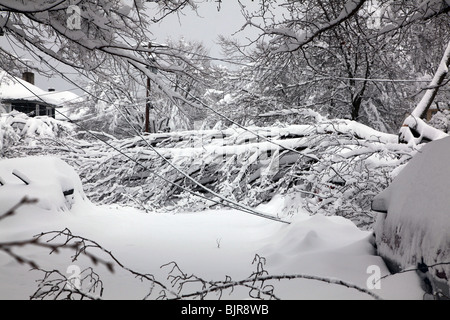 Downed trees and power lines block a suburban street after a powerful winter snow storm - Stock Image