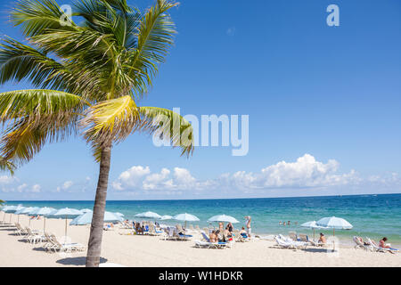 Fort Lauderdale Ft. Florida Beach North Atlantic Avenue A1A public beach palm tree umbrella lounge chair ocean shoreline sand le - Stock Image