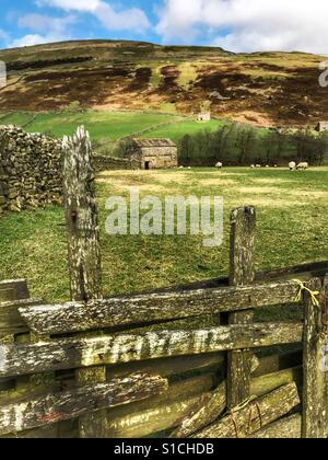 Swaledale, UK. Private sign into a farmers field - Stock Image