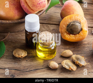Apricot kernel oil and apricot kernels on wooden background. - Stock Image
