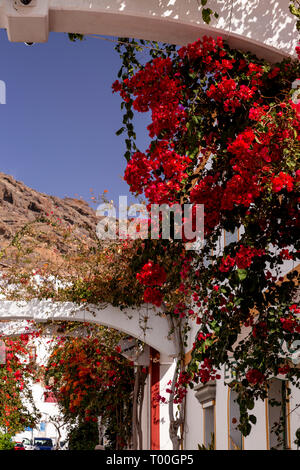 Houses with flowers at Puerto de Mogan, Gran Canaria, Canary Islands - Stock Image