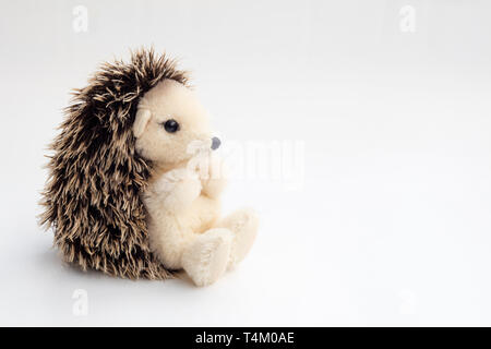 Detail of stuffed hedgehog in white background. - Stock Image