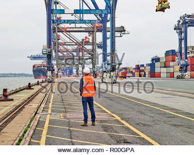Rear view of dock worker looking at cranes on Port of Felixstowe, England - Stock Image
