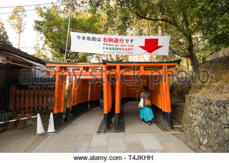 Banner hanging above the entrance to the Senbon Torii indicating the right way to go, Fushimi Inari Taisha Shinto shrine, Fukakusa Yabunouchichō, Fus - Stock Image