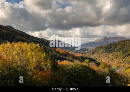 Gwydyr Forest in Snowdonia, North Wales, in autumn colours - Stock Image