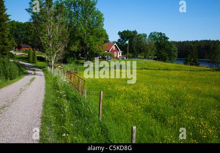 Swedish idyllic summer landscape with red cottage fields and swedish national flag - Stock Image