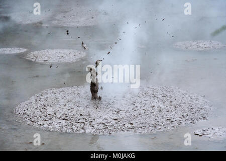 Boiling Mud – Wai-o-Tapu New Zealand - Stock Image