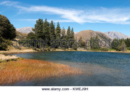 High country scenery, Canterbury, New Zealand - Stock Image