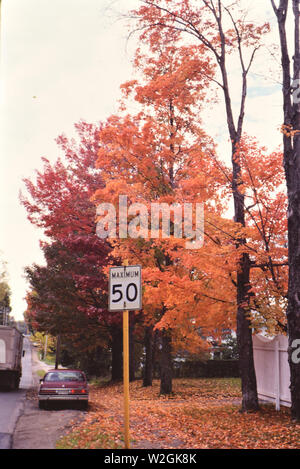 Car parked alongside a road in autumn ca. 1986 - Stock Image