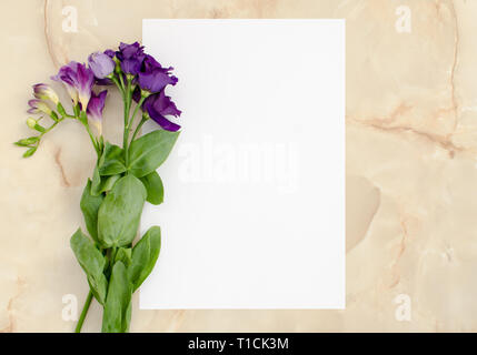 Flowers and blank paper card for text - Stock Image