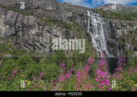 Norwegian scenic nature with waterfall and fireweed. - Stock Image