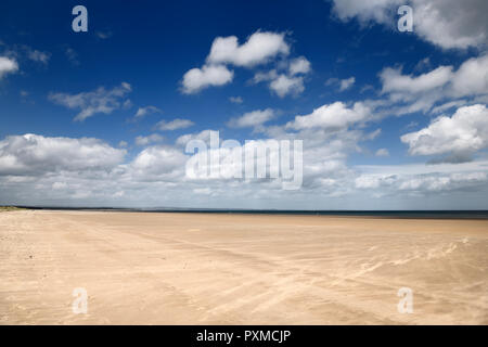High wind on wide long St Andrews West Sands beach with blue sky and white clouds St Andrews Fife Scotland UK - Stock Image