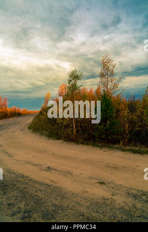 The country road overgrown with small wood makes a turn - Stock Image
