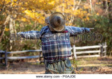 Scarecrow, Cradle of Forestry Interpretive Center, Pisgah National Forest, North Carolina - Stock Image