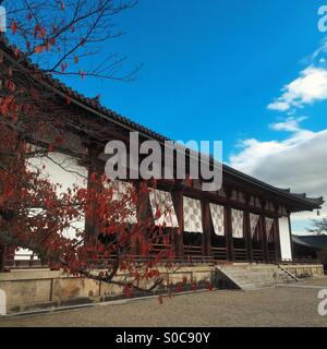 Lecture hall with autumn leaves at Horyu-ji or Learning Temple of the Flourishing Law, a Buddhist temple founded - Stock Image