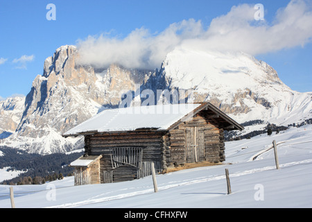 Cabin in front of Mount Langkofel / Sassolungo, Seiser Alm / Alpe di Siusi, South Tyrol, Italy - Stock Image