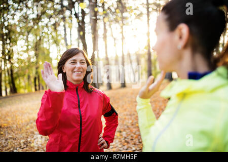 Two female runners stretching outdoors in forest in autumn nature, giving high five at sunset. - Stock Image