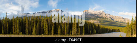 The Rocky Mountains, Banff National Park, Alberta, Canada - Stock Image