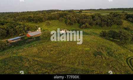 Aerial view from drone of working farm at sunset with Gloucester Old Spots pigs, prairie and forests, barns and farmhouse, Blanchardville, WI, USA - Stock Image