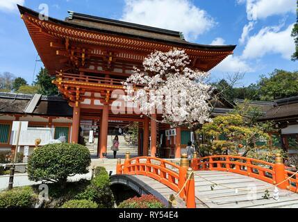 Japan, Honshu island, Kansai, Kyoto, the Kamigamo jinja sanctuary - Stock Image
