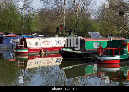 Narrowboats in the Melbourne Marina on the Pocklington Canal, East Yorkshire, England UK - Stock Image