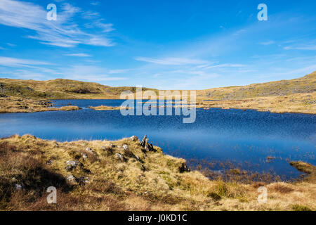 Llyn Gelli Gain reservoir in southern Snowdonia National Park. Bronaber, Trawsfynydd, Gwynedd, Wales, UK, Britain - Stock Image