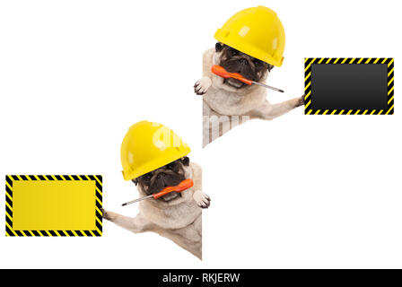 frolic mechanic construction worker pug dog with constructor helmet, holding orange screwdriver and blank yellow and black sign board, isolated on whi - Stock Image