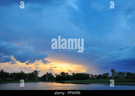 Sunset over the Yellow Water Billabong, Northern Territory, Top End, Australia - Stock Image