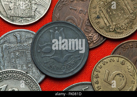 Coins of the Netherlands. Three tulips depicted in the Dutch two and a half cent coin (1942). - Stock Image