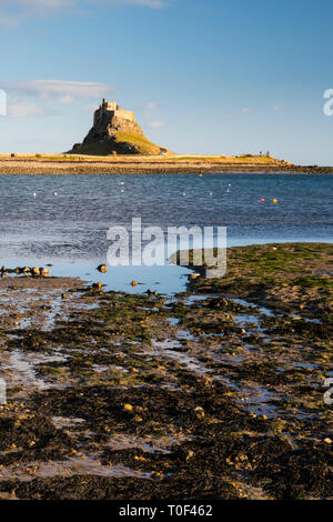 Lindisfarne Castle viewed from across the sea inlet on a sunny day. - Stock Image