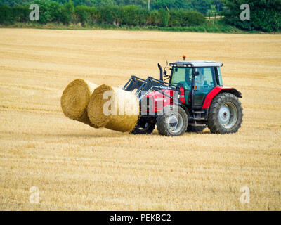 Tractor collecting cylindrical hay bales for transport to storage  North Yorkshire England - Stock Image