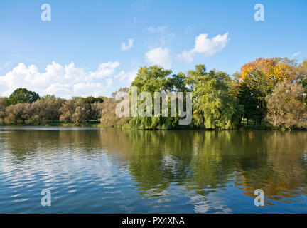 Stratford, Ontario, Canada. Weeping willow and other trees along the Avon River in Stratford, ON. - Stock Image