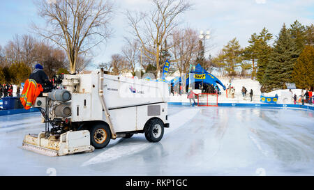 Zamboni resurfacing machine cleaning the ice on an outdoor skating rink. - Stock Image