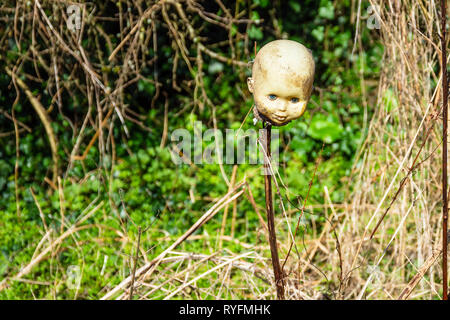 A mysterious macabre arrangement of a plastic dolls head placed on a stick next to a tangled busy hedegrow - Stock Image