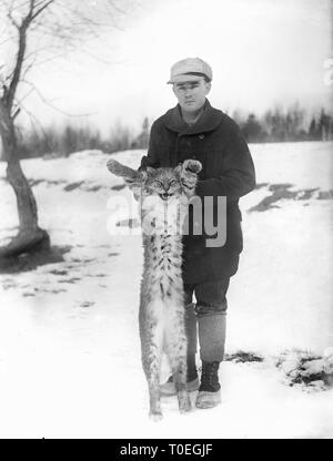 A young man displays his trophy Maine bobcat or lynx, ca. 1915. - Stock Image