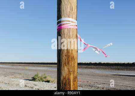A wooden post beside a highway in a flat landscape, prairie, with pink and white ribbons tied around it, memorial to crash victim, windblown - Stock Image