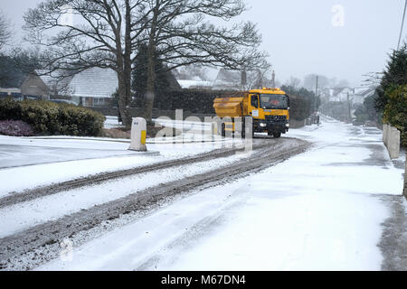 Portsihead. 1st Mar, 2018. UK Weather:  The icy weather and snow arrived in Somerset during the afternoon. Suburban - Stock Image
