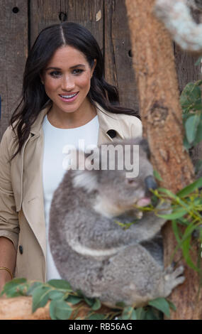 Meghan Markle, Duchess of Sussex, and Prince Harry Duke of Sussex, pictured at Taronga Zoo in Sydney, Australia on October 16th 2018. - Stock Image