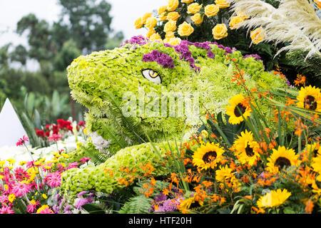 Parada de las Flores - Stock Image