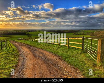 Farm track and pasture fields at sunset, Kingsdon, Somerset, UK - Stock Image
