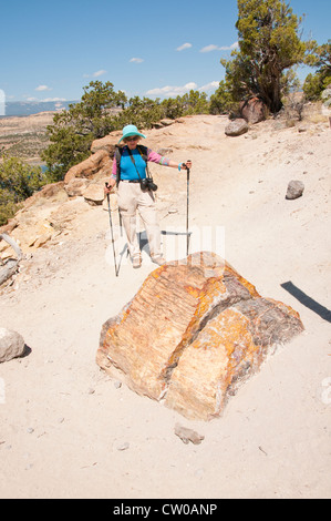 USA Utah, woman hiking in Escalante Petrified Forest State Park. - Stock Image
