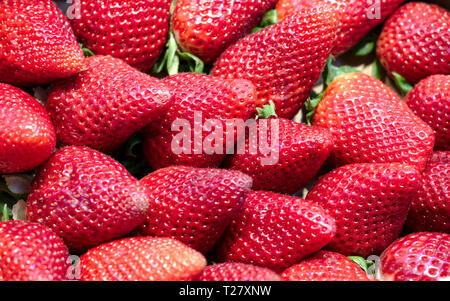 Fresh vegetables and fruits, one day at the street market, searching for colors, I found these strawberries. - Stock Image