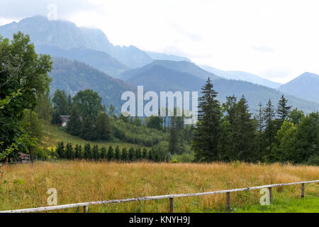 View of the Tatra Mountains and the green area of town of Zakopane in Poland. - Stock Image