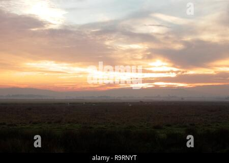 Pevensey Levels, UK. 27th Dec, 2018. UK weather. The sun sets over the South Downs as mist and fog rolls onto the fields of the Pevensey Levels, East Sussex, UK. Credit: Ed Brown/Alamy Live News - Stock Image