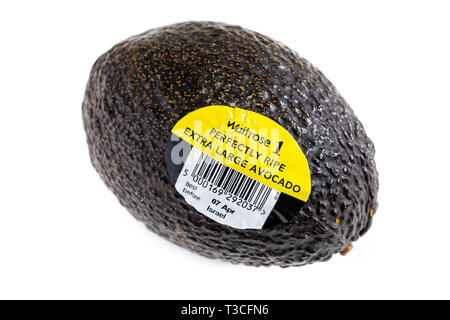 Bar coded labels on ripe Avocado on white background - Stock Image