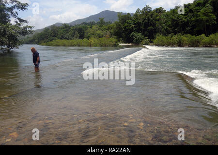 Man wading to check depth across flooded causeway after wet season rains, Mulgrave River, Goldsborough Valley, near Cairns, Queensland, Australia. No  - Stock Image