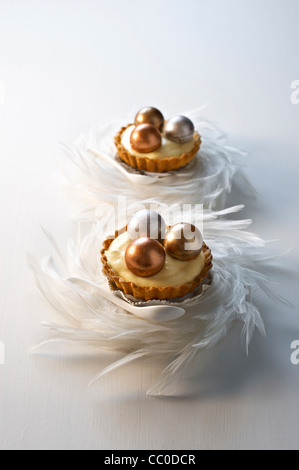 Chocolate and Passion Fruit Tart - Stock Image